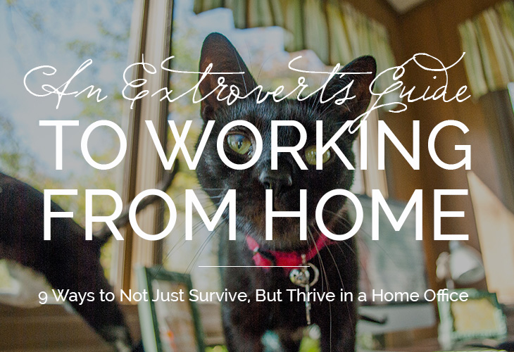 extrovert, pet adoption, community, working from home, home office