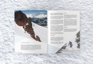 Ski Buyer's Guide, Blister Gear Review, Ski, Snowboard, Helmets, Goggles, Print Layout, Graphic Design